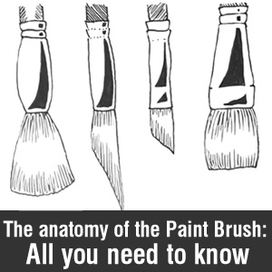 Anatomy of Paint Brushes banner