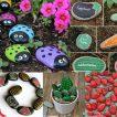 5 Fun Rock Painting Ideas To Brighten Up Your Garden