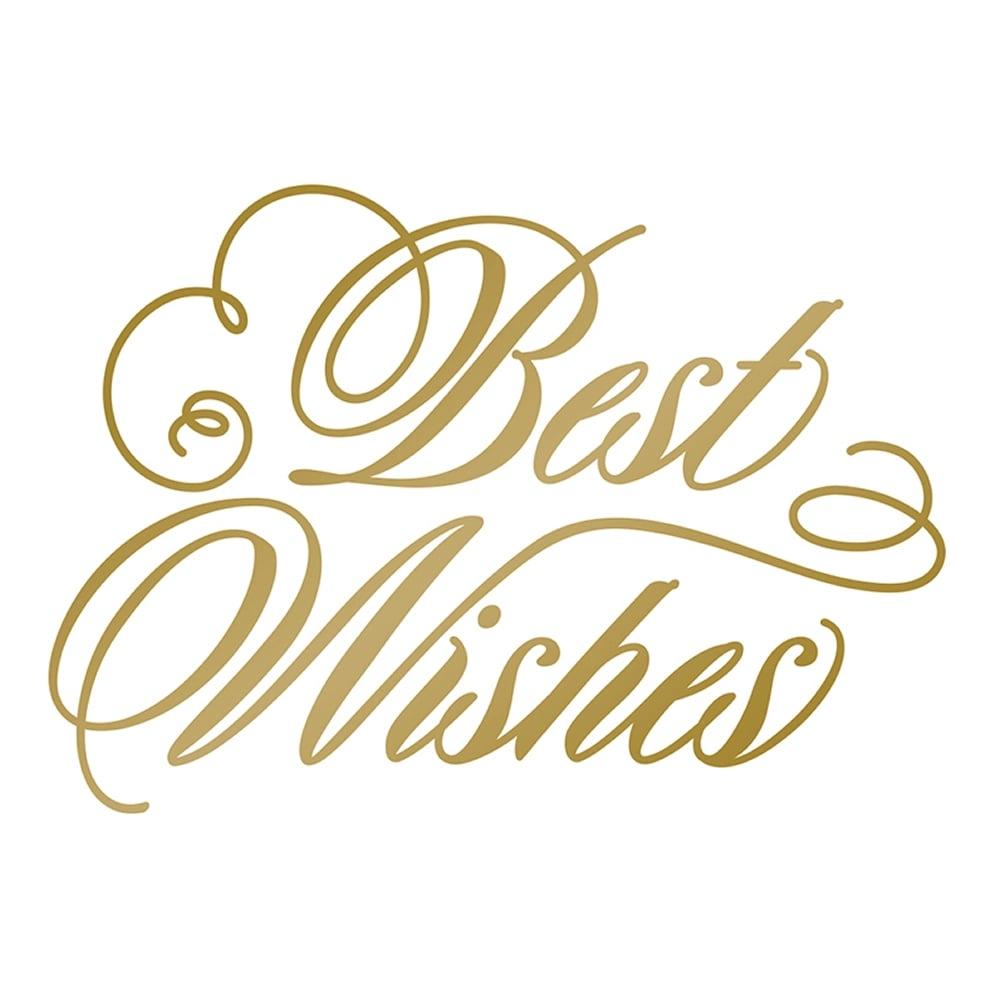 Anna Griffin Foil Stamp Die Best Wishes