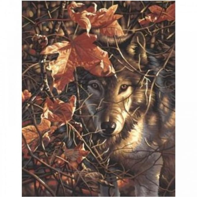 Autumn Wolf Paint by Numbers