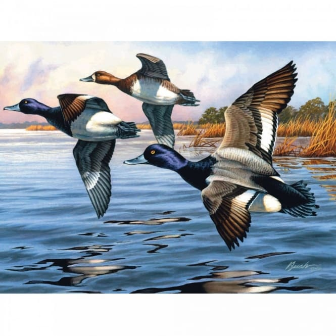 Blue Bills The Artists Collection Painting by Numbers