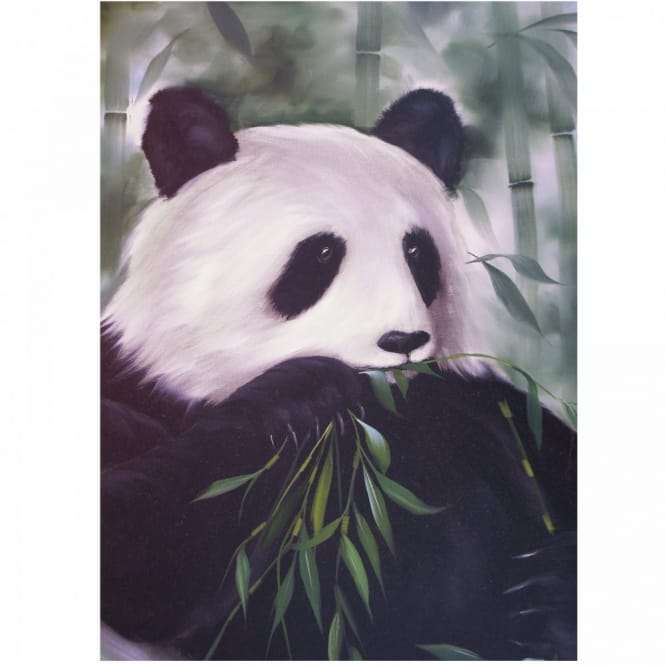 Book: Wildlife Painting Project Pack - Panda