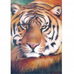 Book: Wildlife Painting Project Pack - Tiger