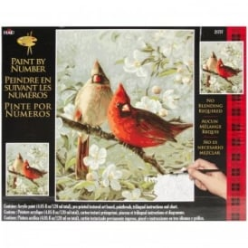 Cardinals & Cherry Blossoms Paint By Numbers