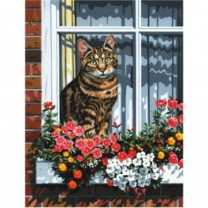 Cat In The Window Painting By Numbers