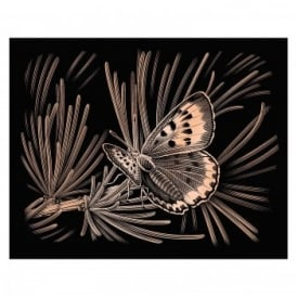 Copperfoil Butterfly