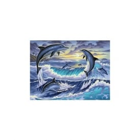 Dolphin Sunrise Large Painting By Numbers