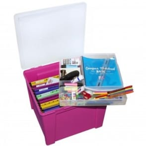 Fuchsia Office Box