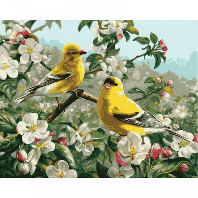 Goldfinches Paint by Number