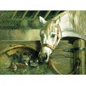 Horse and Kitten The Artists Collection Painting By Numbers