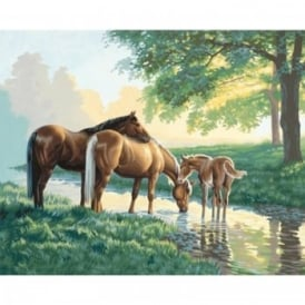 Horse by a Stream Paint by Numbers