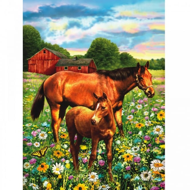 Horses in Field - Medium Paint By Numbers