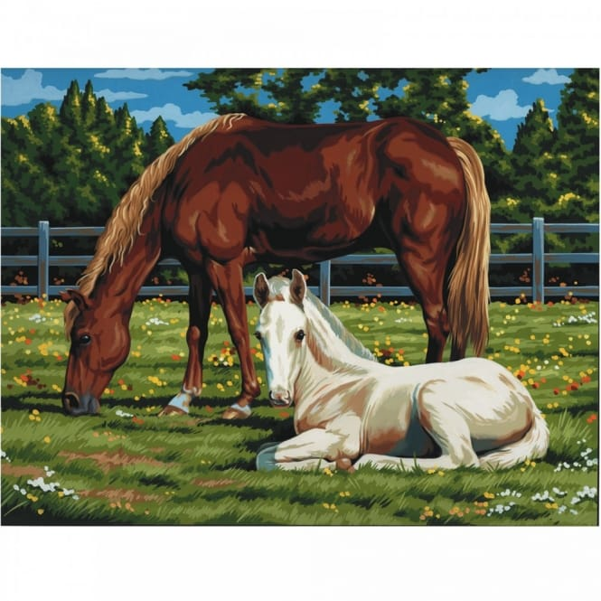 Horses In The Field Painting By Numbers