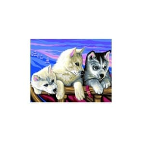 Huskies Large Painting By Numbers