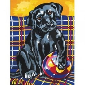 Junior Paint by Numbers Black Labrador