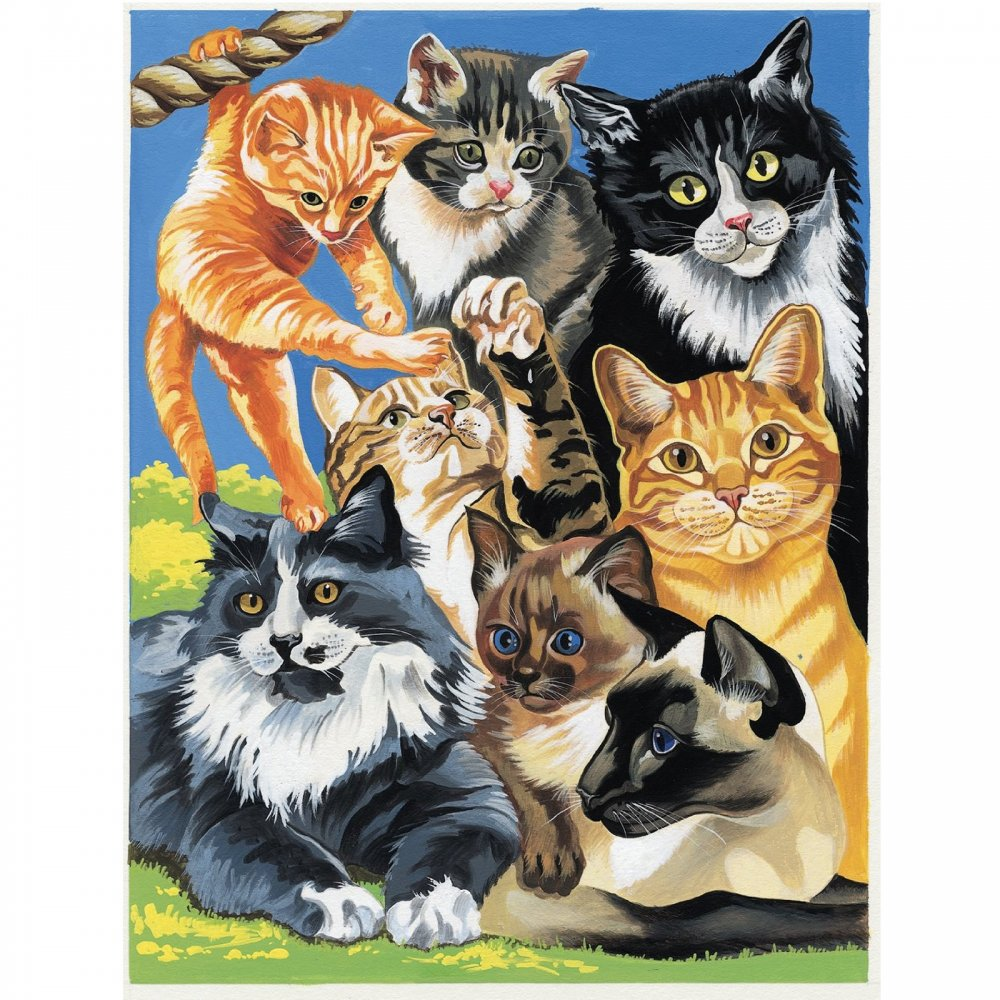 Junior Paint By Numbers Cats Montage Craftyarts Co Uk