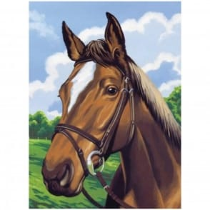 Junior Paint by Numbers Horses Head