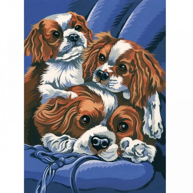 Junior Paint by Numbers King Charles Spaniels