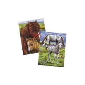 Junior Painting by Number Twin Pack Shetland Ponies & White Horses