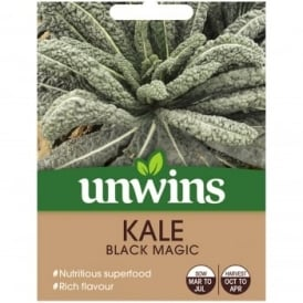 Kale Seed - Black Magic