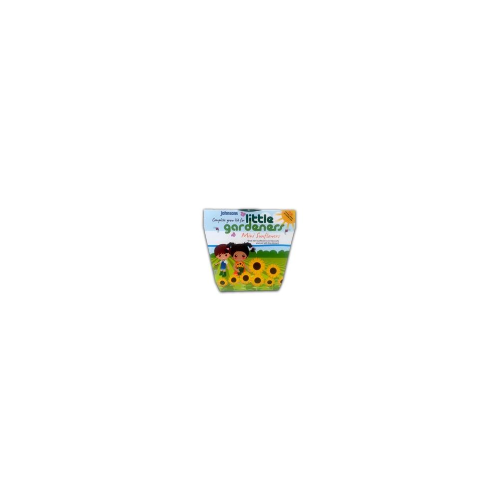 Little Gardeners Complete Grow Kit Mini Sunflowers - Mr ...