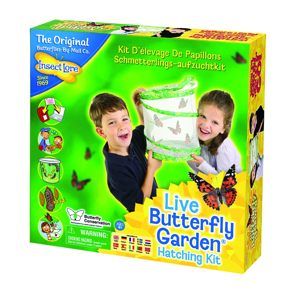 Find great deals on eBay for live butterfly garden insect lore. Shop with confidence.