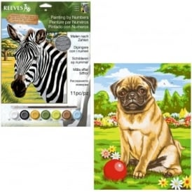 Medium Painting By Numbers Pug and Zebra Bundle