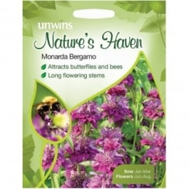Natures Haven Monarda Hybrida Bergamo Seeds