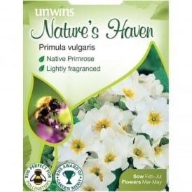 Natures Haven Primula Vulgaris Seeds