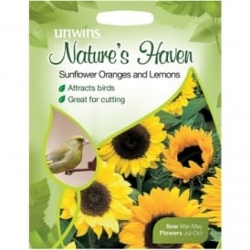 Natures Haven Sunflower Oranges & Lemons Seeds