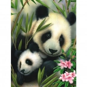 Panda & Baby Junior Paint By Numbers