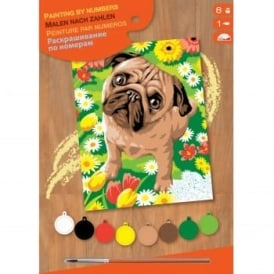 Pug Dog & Flowers Junior Paint by Number