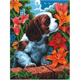 Puppy & Flowers Painting By Numbers