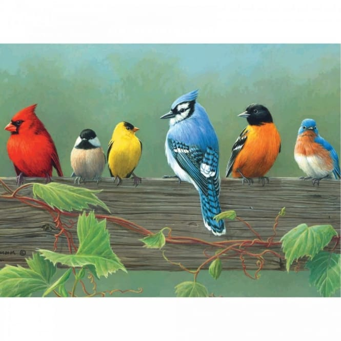 Rail Birds The Artists Collection Painting by Numbers