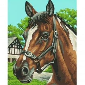 Schipper Kids Painting By Numbers Horse Portrait*