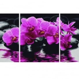 Schipper Triptych Paint By Numbers Orchids
