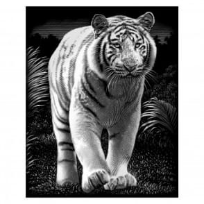 Scraperfoil White Tiger