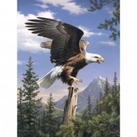 Screaming Eagle The Artists Collection Painting by Numbers