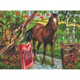 Senior Paint By Numbers Horse