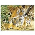 Senior Paint By Numbers - Tiger and Cubs