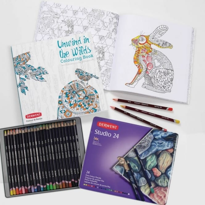 Studio Pencils 24 Tin + Unwind in the Wilds Colouring Book