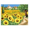 Sunflowers Large Painting By Numbers