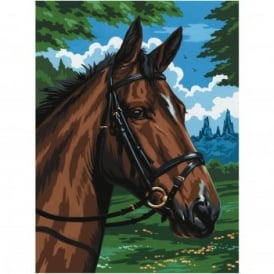 Thoroughbred Painting By Numbers
