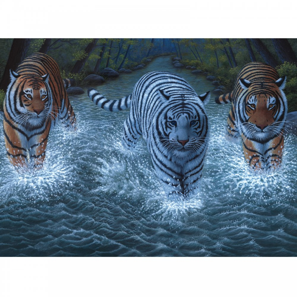 Three Tigers Large Paint By Numbers - CraftyArts.co.uk