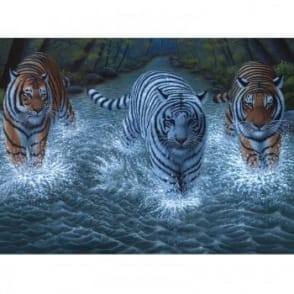 Three Tigers Large Paint By Numbers