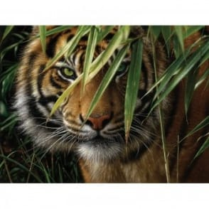 Tiger The Artists Collection Painting by Numbers