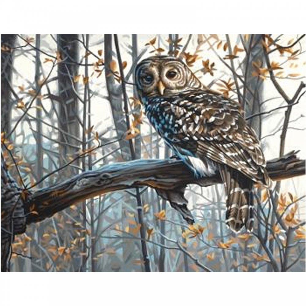 Wise Owl by Paint by Numbers